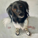 Portret schilderij Syb